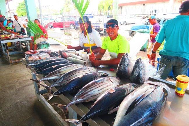 Fish Market Apia Samoa Tuna