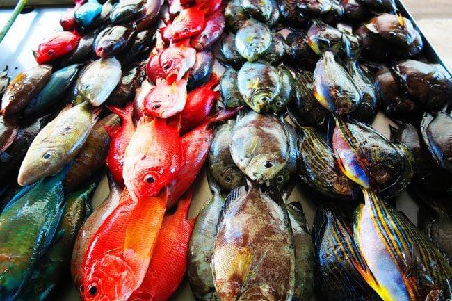 Fish Market Apia Samoa