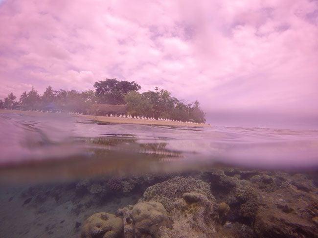 Hideaway Island Vanuatu Underwater
