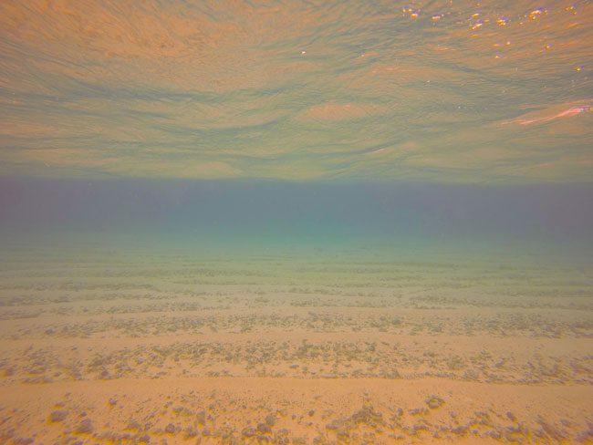 Lalomanu Beach Samoa underwater color
