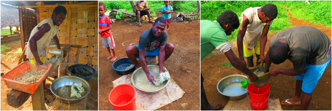 Making Kava in Santo Island Vanuatu