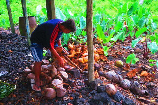 Making Umu in Samoa peeling coconuts