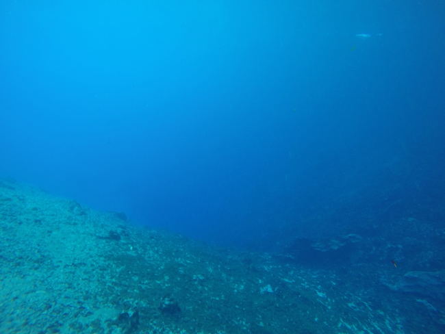Matevulu Blue Hole Vanuatu 3