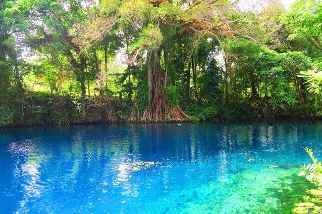 Matevulu Blue Hole Vanuatu 4