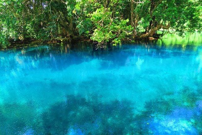 Matevulu Blue Hole Vanuatu 6