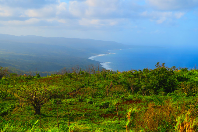 Tanna Island Vanuatu Panoramic View