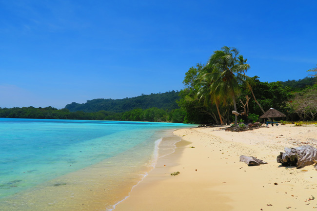 Tropical Beach South Pacific Lonnoc Vanuatu
