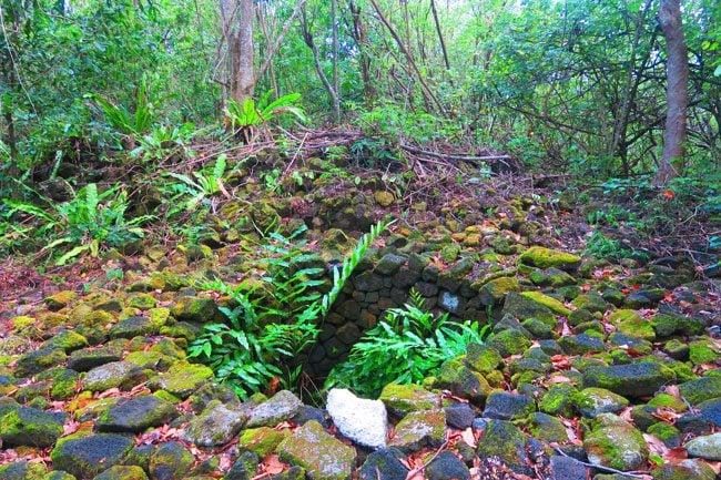 Falealupo Peninsula Savaii Samoa Blood Well