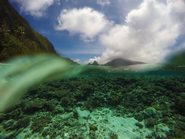 Land and underwater photo of Ofu Beach American Samoa