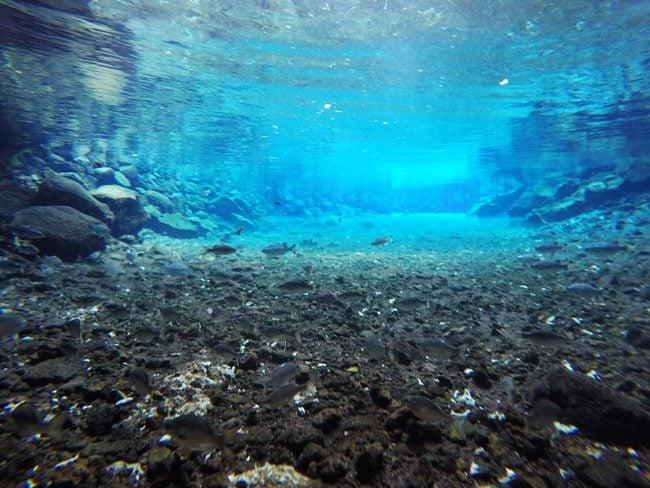 Piula Cave Pool Samoa underwater