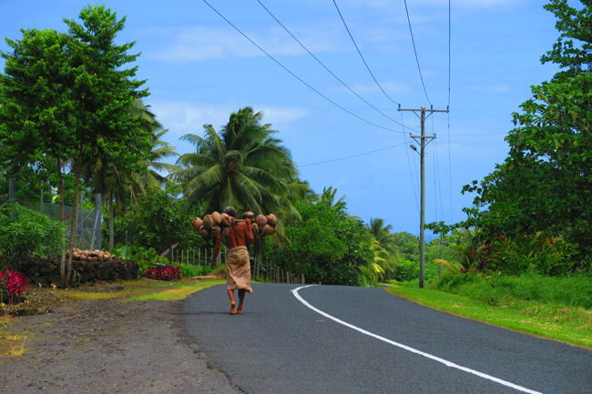 Sleepy Village Savaii Samoa - man carrying coconuts