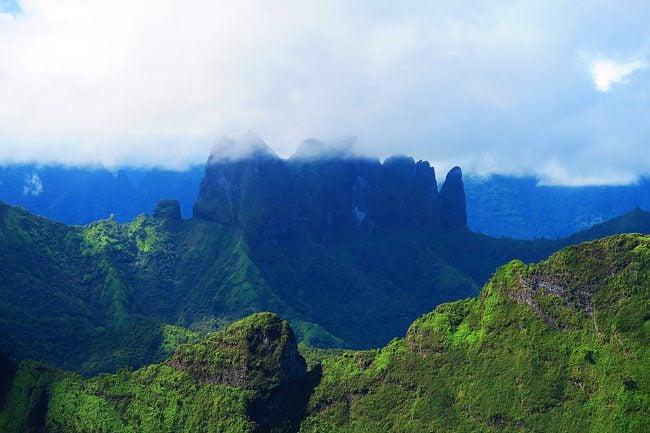 Closeup Mount Aorai hike Tahiti French Polynesia