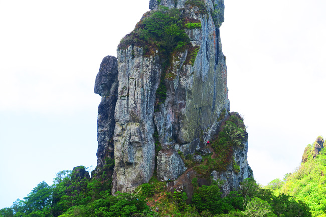 Cross Island Track Rarotonga Cook Islands the needle