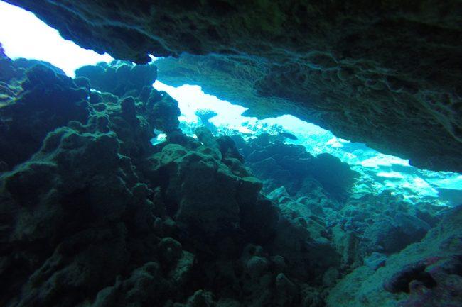 Diving in Rarotonga Cook Islands underwater cavern