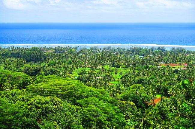 Highland Paradise Rarotonga Cook Islands closeup view