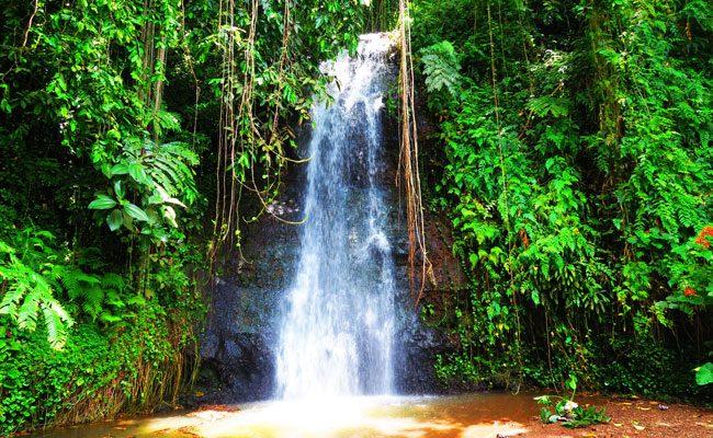 Waterfall in Vaipahi gardens Tahiti French Polynesia