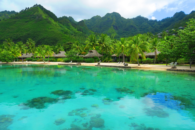 Dolphin center Intercontinental Resort Moorea French Polynesia