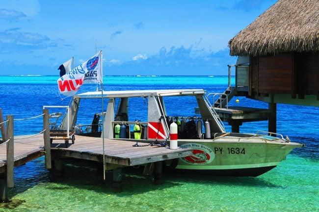 Moorea blue diving french polynesia