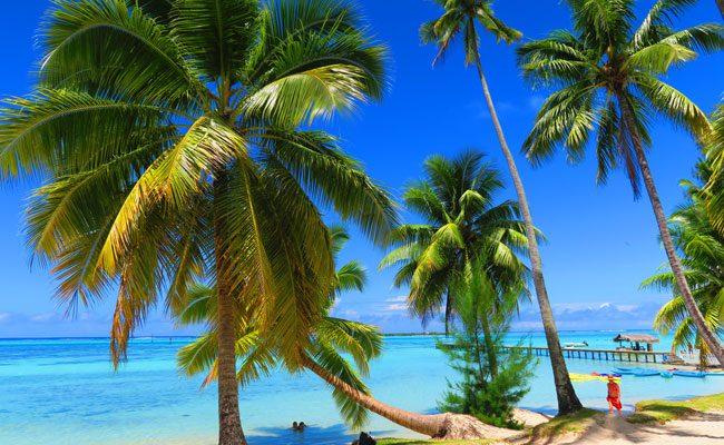 Motu beach Les Tipaniers Moorea French Polynesia