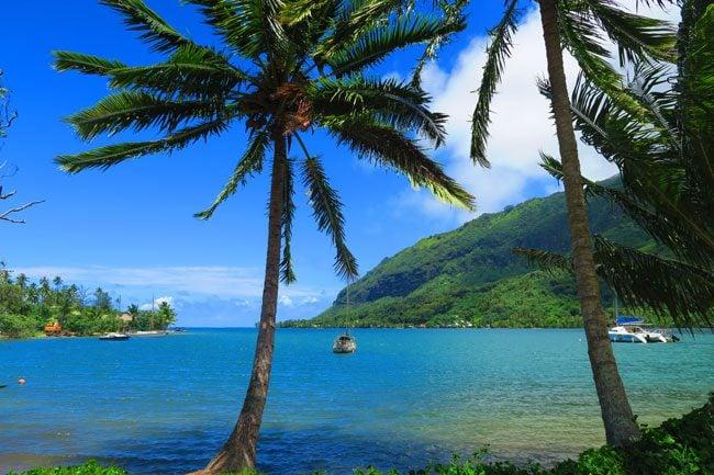 Opunohu Bay Moorea French Polynesia