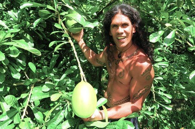 Papenoo Valley tahiti tropical fruits