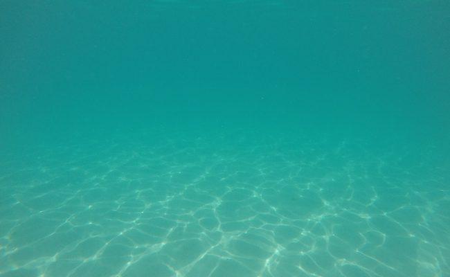 Snorkeling off motu beach Moorea French Polynesia 6