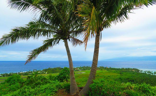 Temae hike Moorea French Polynesia coconuts