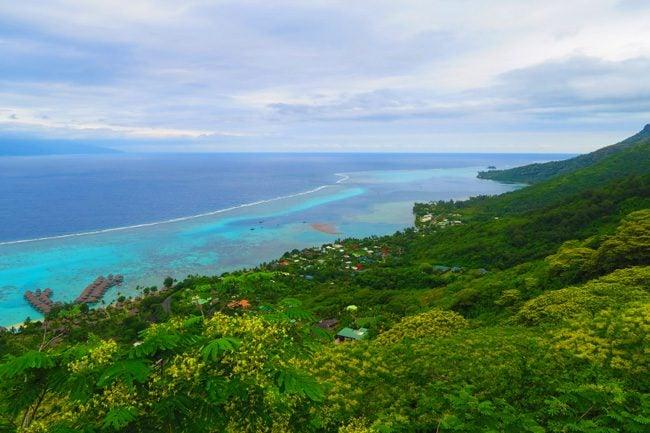 Temae hike Moorea French Polynesia