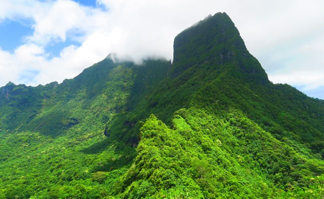 Three coconuts hike Moorea French Polynesia view of mountain