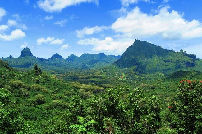 Vaiare to Pao Pao hike Moorea French Polynesia Opunohu Valley