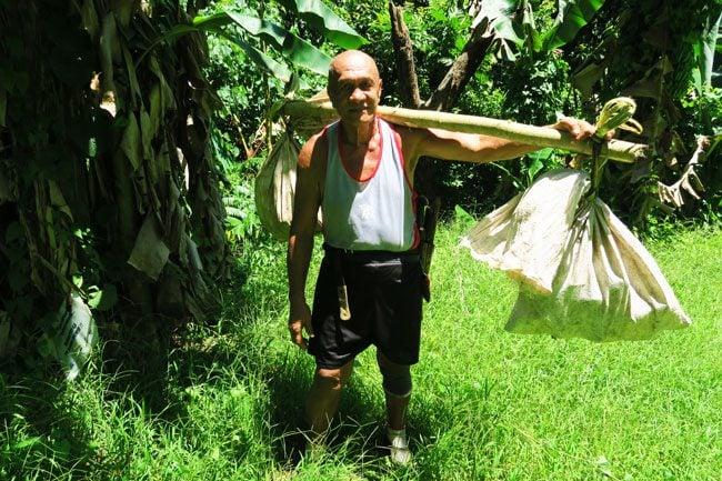 Vaiare to Pao Pao hike Moorea French Polynesia farmer