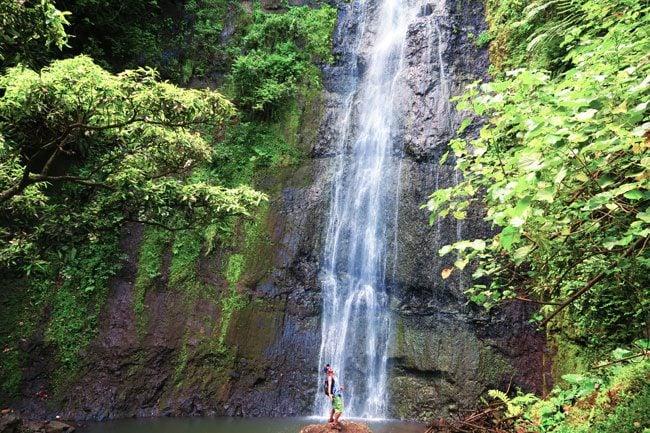 Waterfall in Moorea French Polynesia