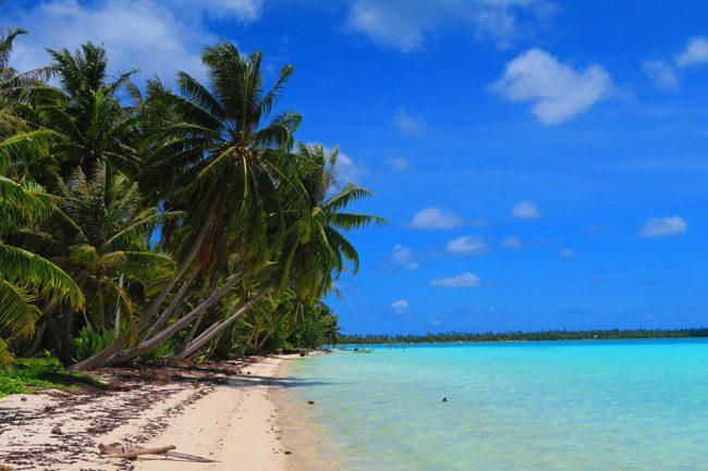 Motu Auira Maupiti French Polynesia plam trees on beach