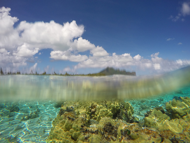 Snorkeling off Motu Auira Maupiti French Polynesia 4