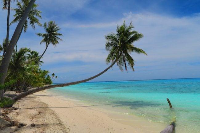PK9 Tropical Beach Fakarava Atoll French Polynesia