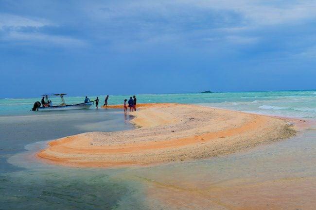 Pink Sand beach Fakarava Atoll French Polynesia 1