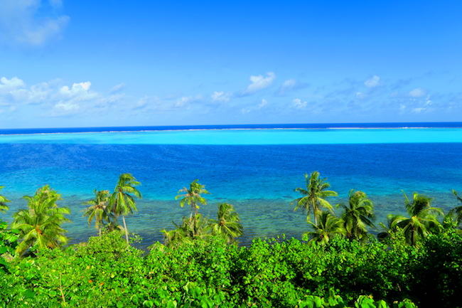 Tefarerii lookout point Huahine Island French Polynesia lagoon closeup