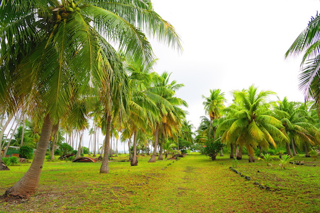 Tetamanu Village main street Fakarava Atoll French Polynesia