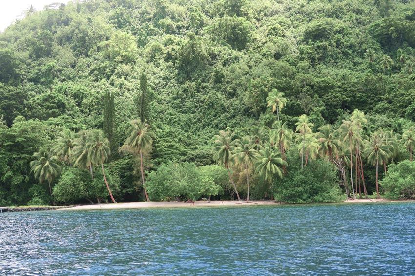 Joe Dassin beach Tahaa French Polynesia