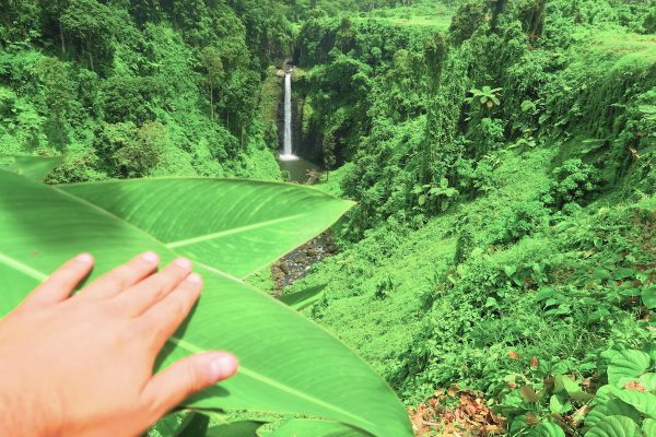 Waterfall, Upolu Island - Samoa