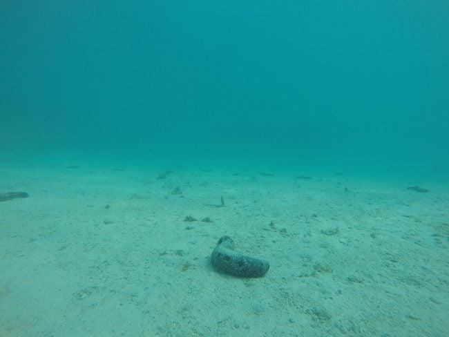 pristine-blue-lagoon-color-huahine-avea-bay