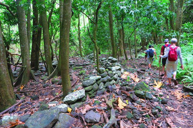 vaipo waterfall hike nuku hiva - ancient royal road