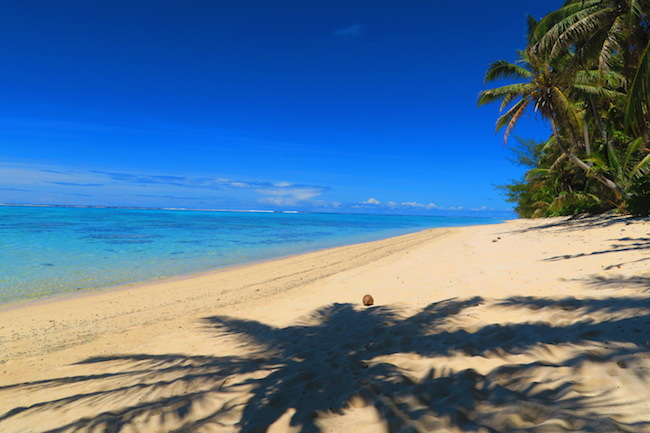 Aroa tropical beach Rarotonga Cook Islands palm tree
