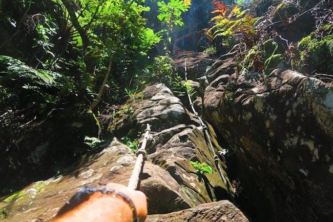 Mount Raemaru Track Rarotonga cook islands hiking - clinbing cliff with rope