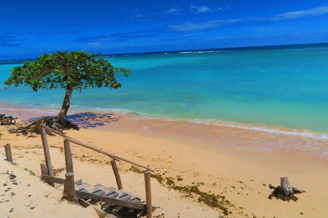 Regina's Beach Fales Manase Savaii Samoa - beach