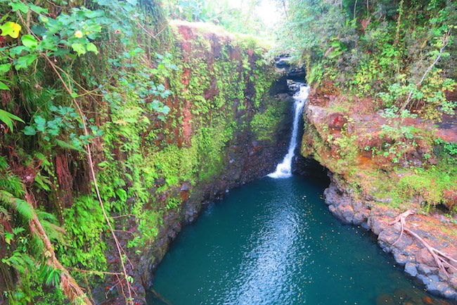 Sauniatu tropical Waterfall samoa