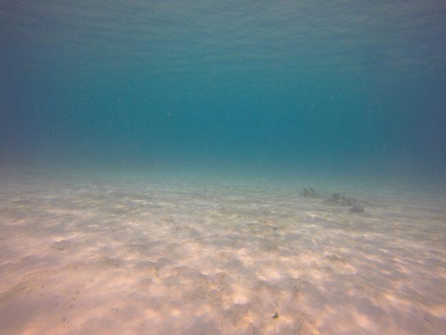 Lonnoc-Tropical-Beach-Santo-Island-Vanuatu-Clear-Water
