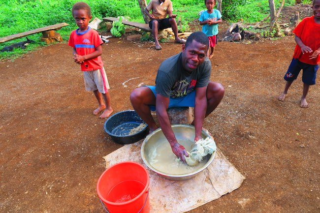 Making Kava Drink In Espiritu Santo Island - Vanuatu