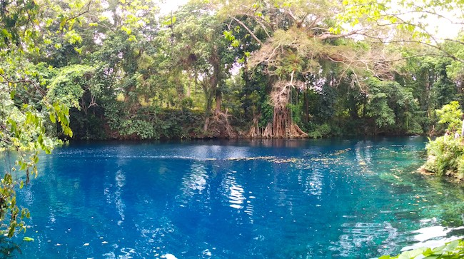 Matevulu Blue Hole Espiritu Santo Vanuatu - Panoramic View