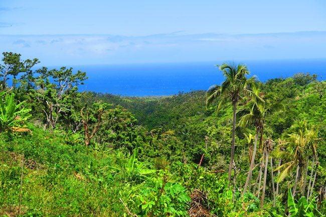 Tanna Tropical Island - Vanuatu